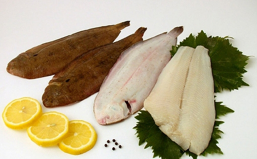 Soles and fillets of halibut